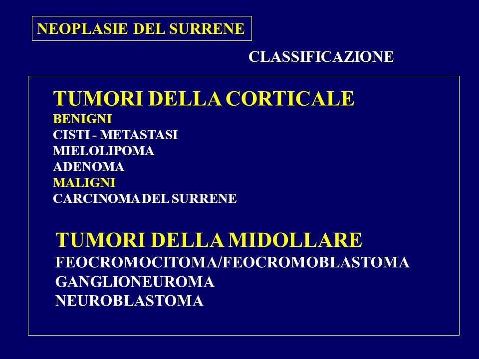 TUMORI DELLA CORTICALE BENIGNI CISTI - METASTASI MIELOLIPOMA ADENOMA MALIGNI CARCINOMA DEL SURRENE TUMORI DELLA MIDOLLARE FEOCROMOCITOMA/FEOCROMOBLASTOMA GANGLIONEUROMA NEUROBLASTOMA CLASSIFICAZIONE NEOPLASIE DEL SURRENE