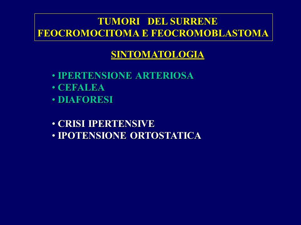SINTOMATOLOGIA IPERTENSIONE ARTERIOSA IPERTENSIONE ARTERIOSA CEFALEA CEFALEA DIAFORESI DIAFORESI CRISI IPERTENSIVE CRISI IPERTENSIVE IPOTENSIONE ORTOSTATICA IPOTENSIONE ORTOSTATICA TUMORI DEL SURRENE FEOCROMOCITOMA E FEOCROMOBLASTOMA