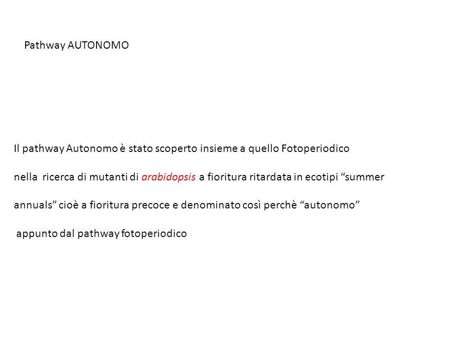 Pathway AUTONOMO Il pathway Autonomo è stato scoperto insieme a quello Fotoperiodico nella ricerca di mutanti di arabidopsis a fioritura ritardata in
