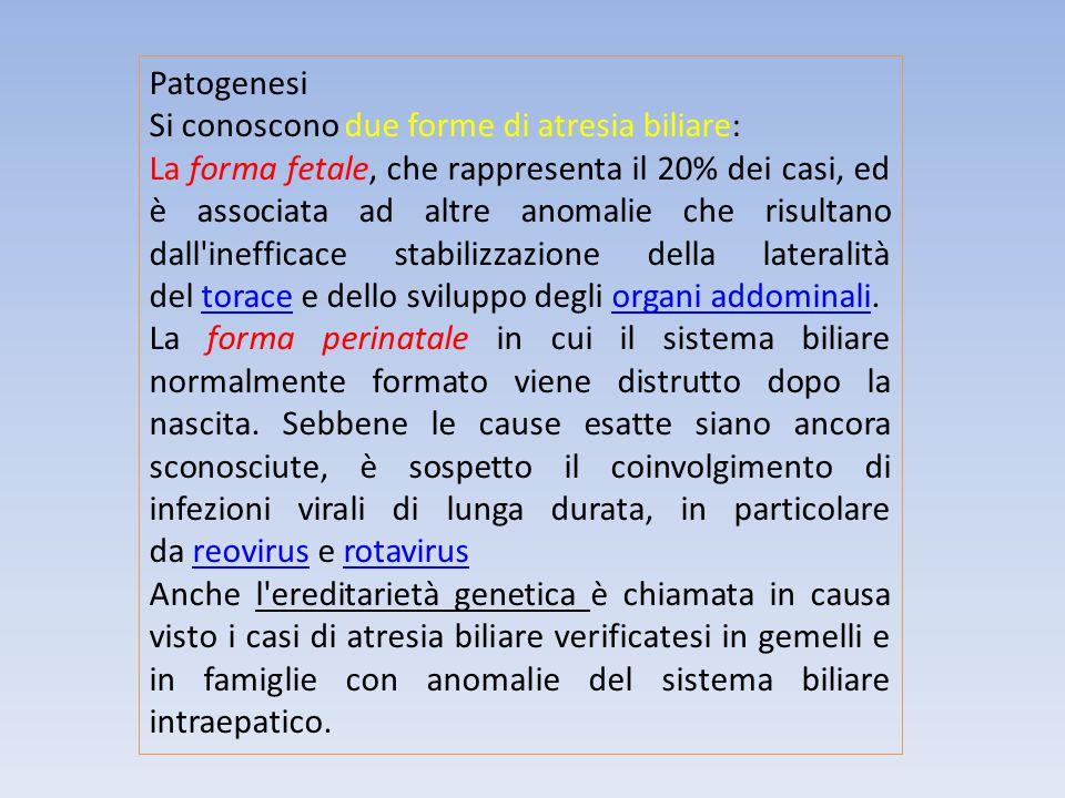 Patogenesi Si conoscono due forme di atresia biliare: La forma fetale, che rappresenta il 20% dei casi, ed è associata ad altre anomalie che risultano
