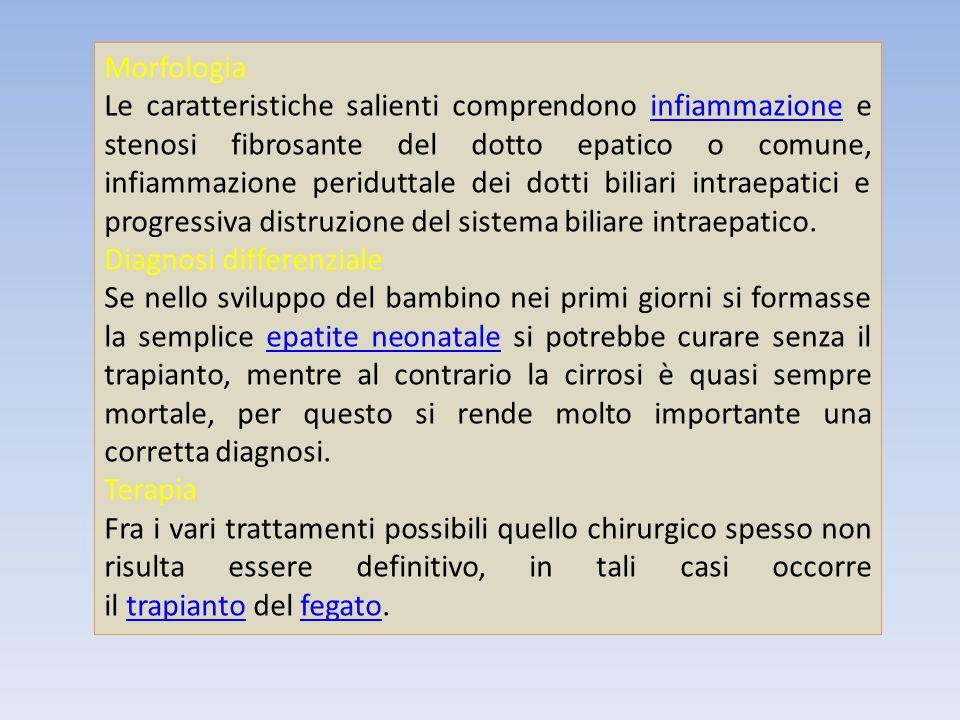 Morfologia Le caratteristiche salienti comprendono infiammazione e stenosi fibrosante del dotto epatico o comune, infiammazione periduttale dei dotti