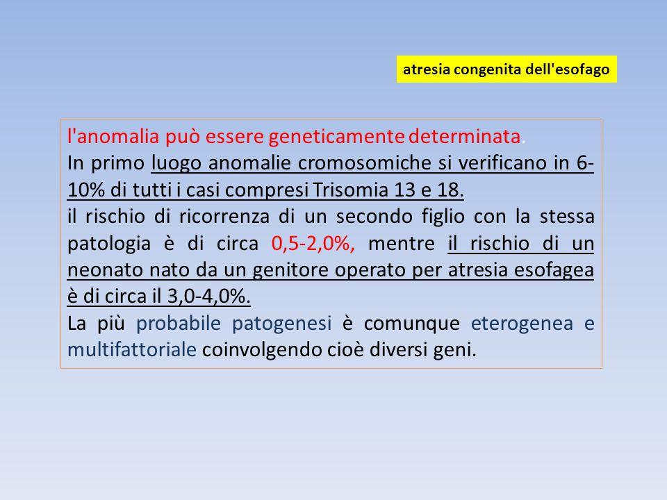 l'anomalia può essere geneticamente determinata. In primo luogo anomalie cromosomiche si verificano in 6- 10% di tutti i casi compresi Trisomia 13 e 1