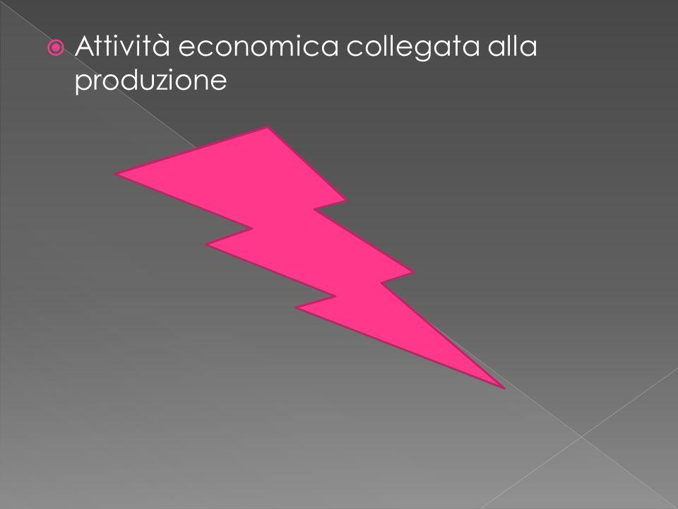  Attività economica collegata alla produzione