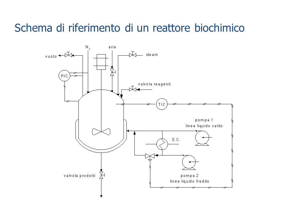 Schema di riferimento di un reattore biochimico
