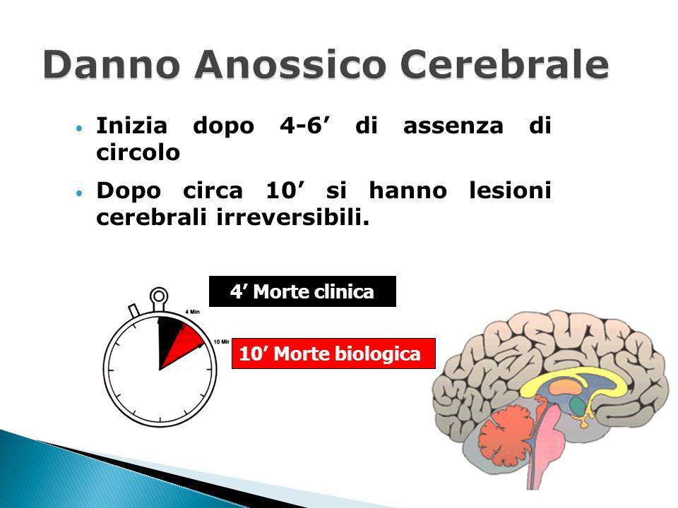 Inizia dopo 4-6' di assenza di circolo Dopo circa 10' si hanno lesioni cerebrali irreversibili. 4' Morte clinica 10' Morte biologica