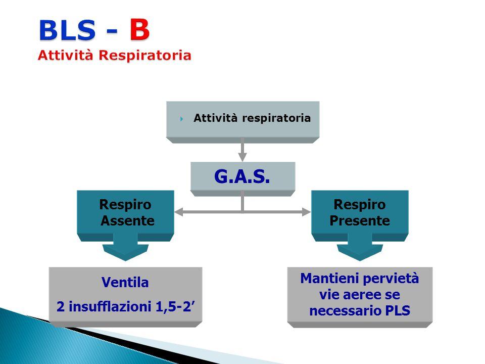  Attività respiratoria G.A.S. Respiro Assente Respiro Presente Ventila 2 insufflazioni 1,5-2' Mantieni pervietà vie aeree se necessario PLS
