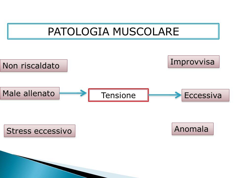 PATOLOGIA MUSCOLARE Tensione Male allenato Non riscaldato Stress eccessivo Improvvisa Eccessiva Anomala