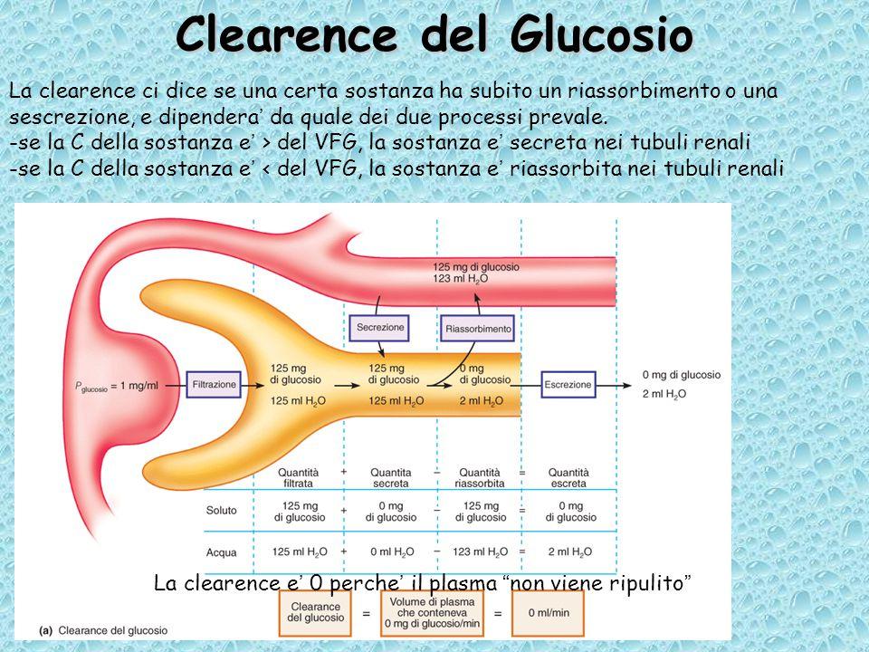 Clearence del Glucosio La clearence ci dice se una certa sostanza ha subito un riassorbimento o una sescrezione, e dipendera' da quale dei due processi prevale.