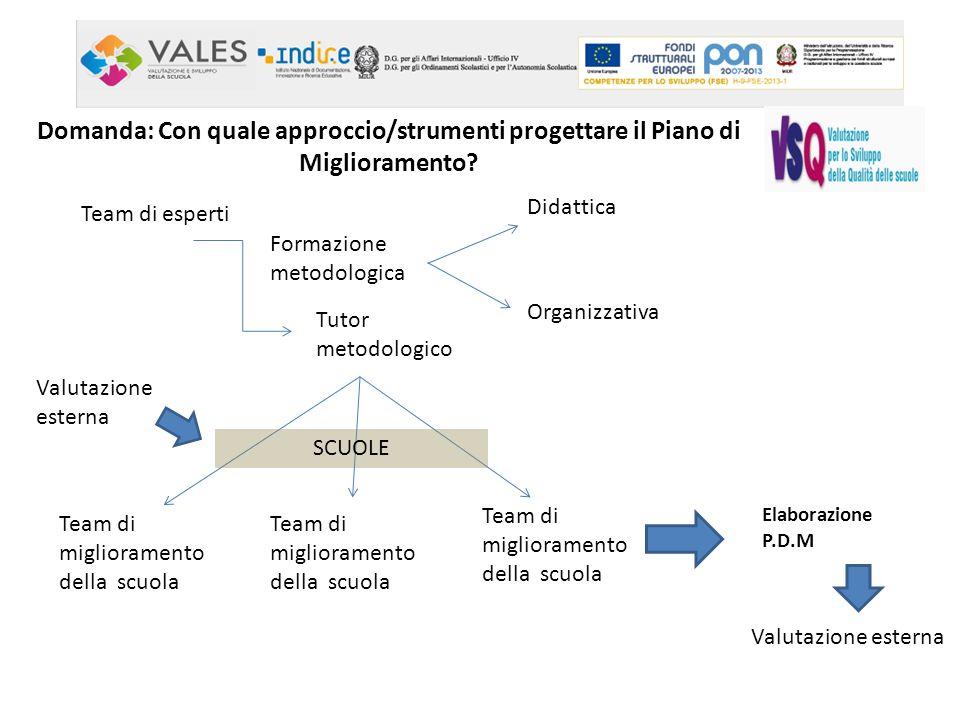 Domanda: Con quale approccio/strumenti progettare il Piano di Miglioramento? Team di esperti Tutor metodologico Team di miglioramento della scuola Ela