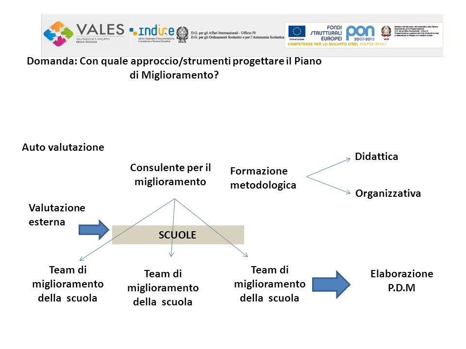 Domanda: Con quale approccio/strumenti progettare il Piano di Miglioramento? Consulente per il miglioramento Team di miglioramento della scuola Elabor
