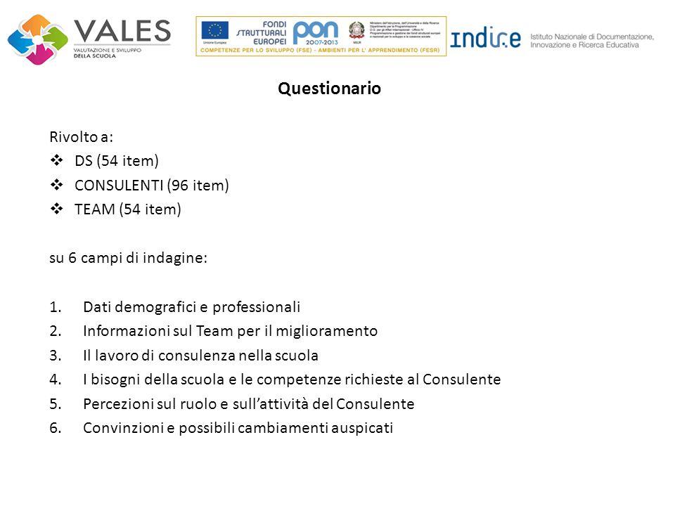 Rivolto a:  DS (54 item)  CONSULENTI (96 item)  TEAM (54 item) su 6 campi di indagine: 1.Dati demografici e professionali 2.Informazioni sul Team p