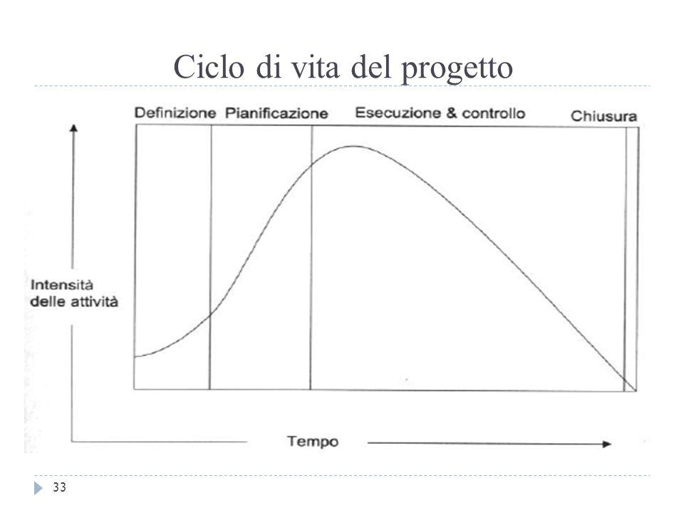 Ciclo di vita del progetto 33