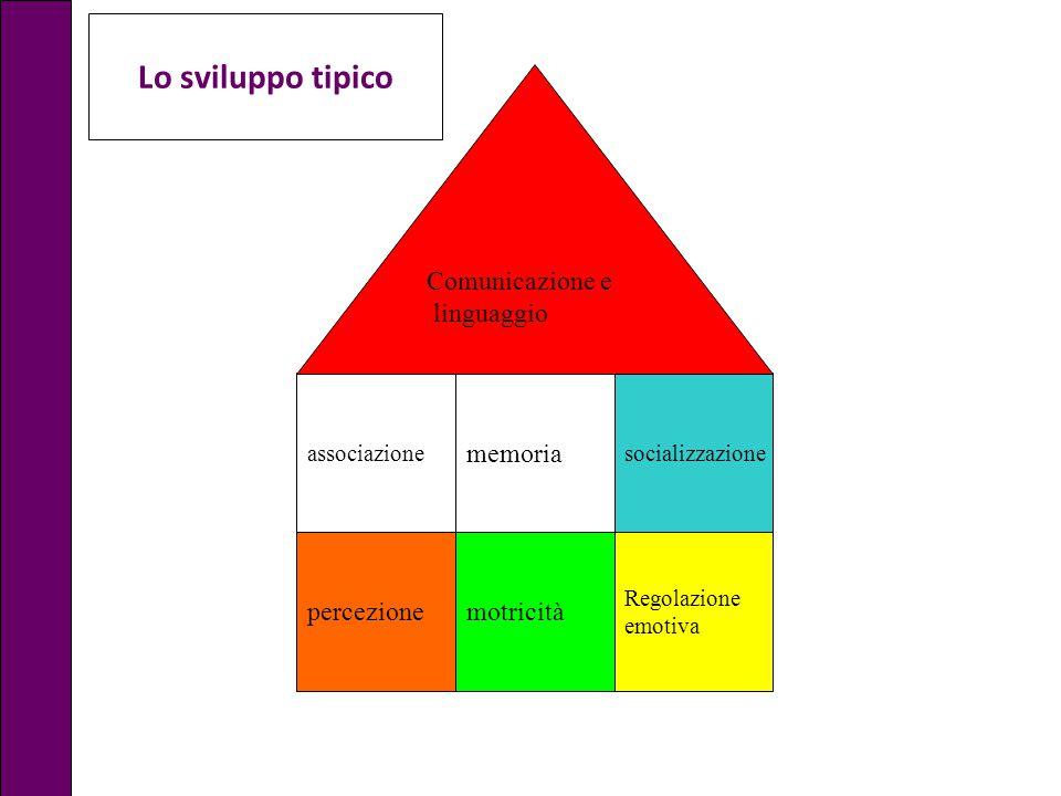 percezionemotricità Regolazione emotiva socializzazione memoria associazione Comunicazione e linguaggio Lo sviluppo tipico