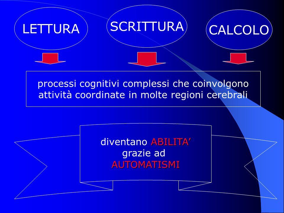 LETTURA SCRITTURA CALCOLO processi cognitivi complessi che coinvolgono attività coordinate in molte regioni cerebrali ABILITA' diventano ABILITA' graz