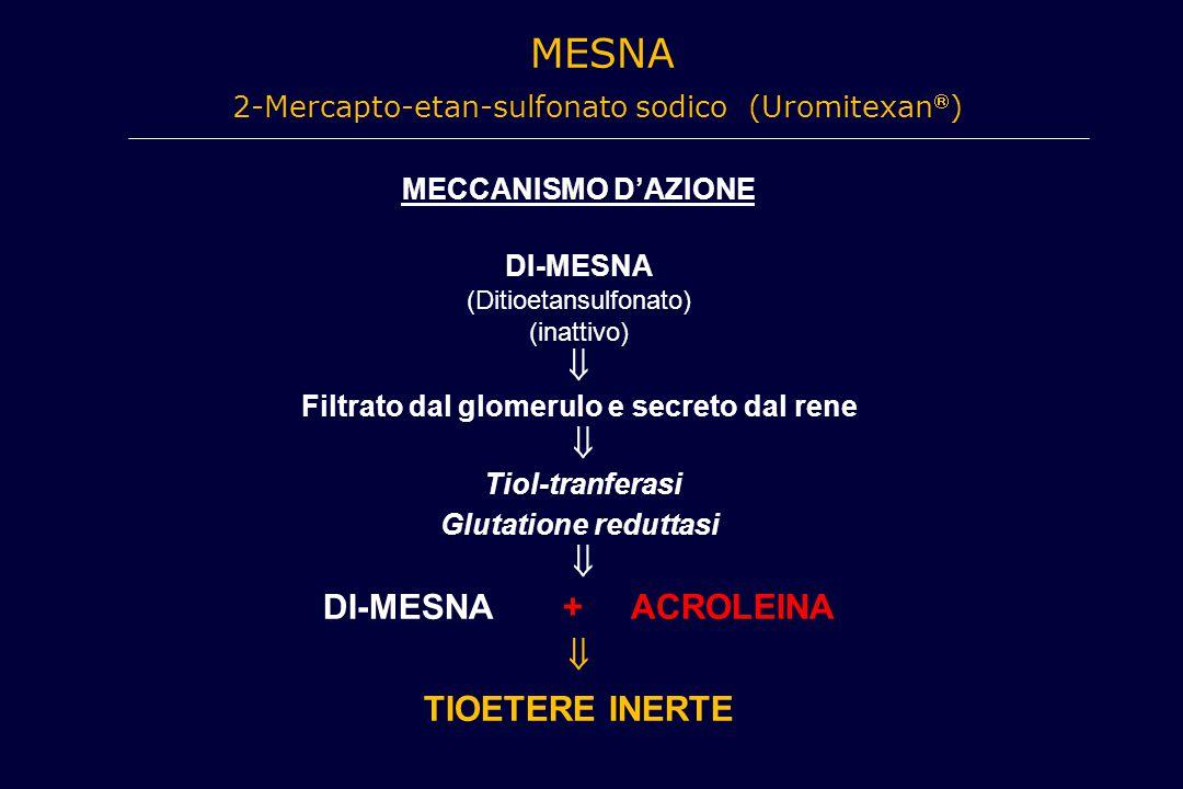 MESNA 2-Mercapto-etan-sulfonato sodico (Uromitexan  ) MECCANISMO D'AZIONE DI-MESNA (Ditioetansulfonato) (inattivo)  Filtrato dal glomerulo e secreto