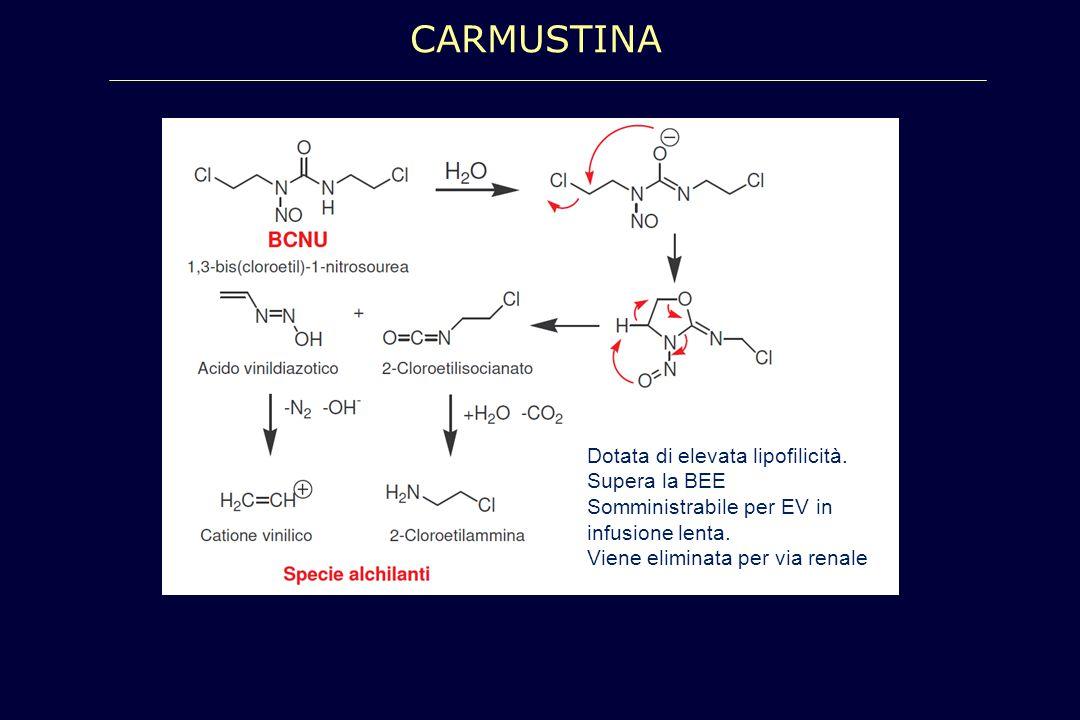 CARMUSTINA Dotata di elevata lipofilicità. Supera la BEE Somministrabile per EV in infusione lenta. Viene eliminata per via renale