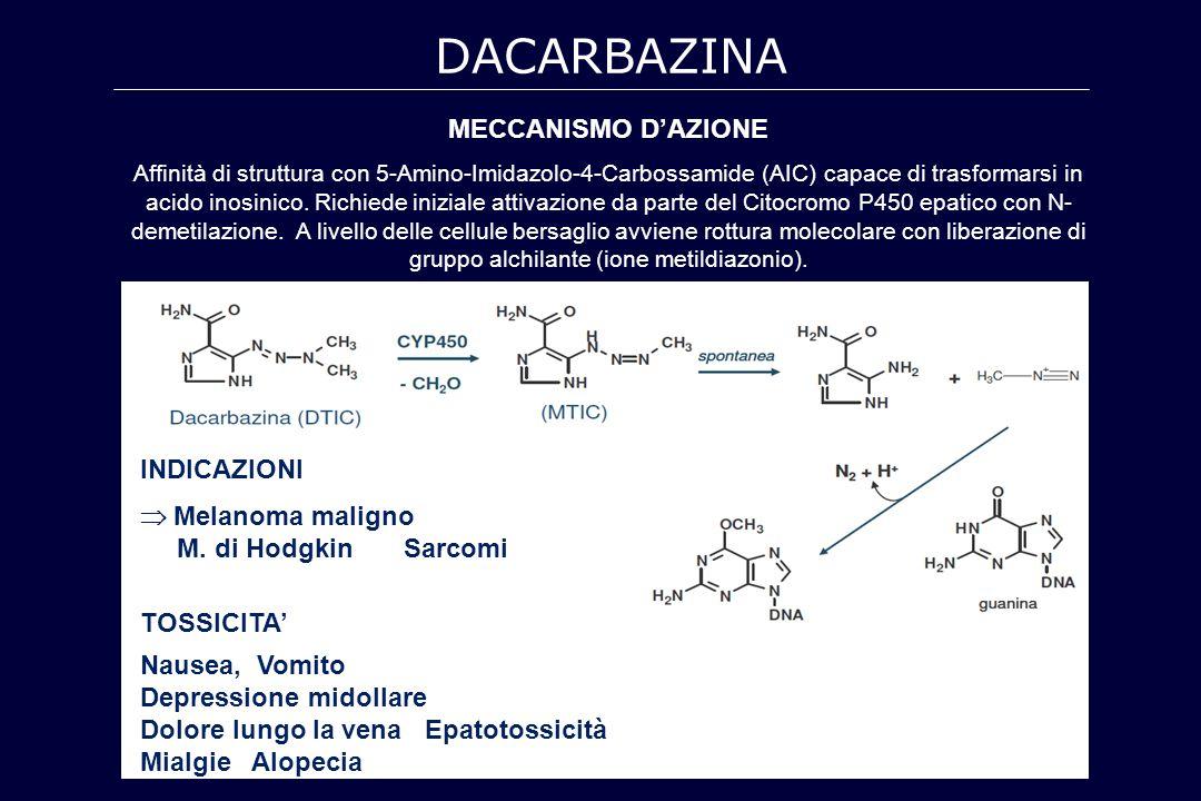 DACARBAZINA MECCANISMO D'AZIONE Affinità di struttura con 5-Amino-Imidazolo-4-Carbossamide (AIC) capace di trasformarsi in acido inosinico. Richiede i