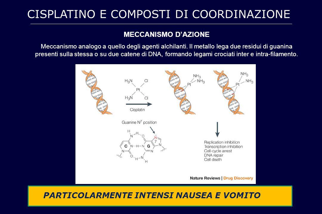 CISPLATINO E COMPOSTI DI COORDINAZIONE MECCANISMO D'AZIONE Meccanismo analogo a quello degli agenti alchilanti. Il metallo lega due residui di guanina