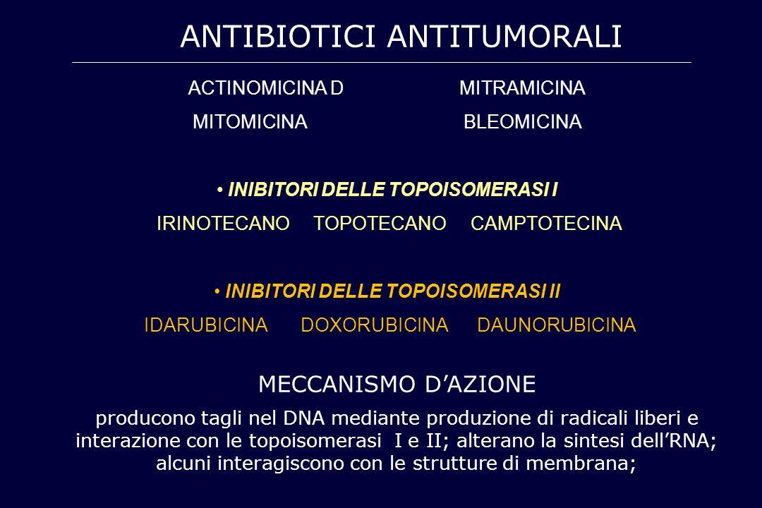 ANTIBIOTICI ANTITUMORALI ACTINOMICINA DMITRAMICINA MITOMICINABLEOMICINA INIBITORI DELLE TOPOISOMERASI I IRINOTECANO TOPOTECANO CAMPTOTECINA INIBITORI