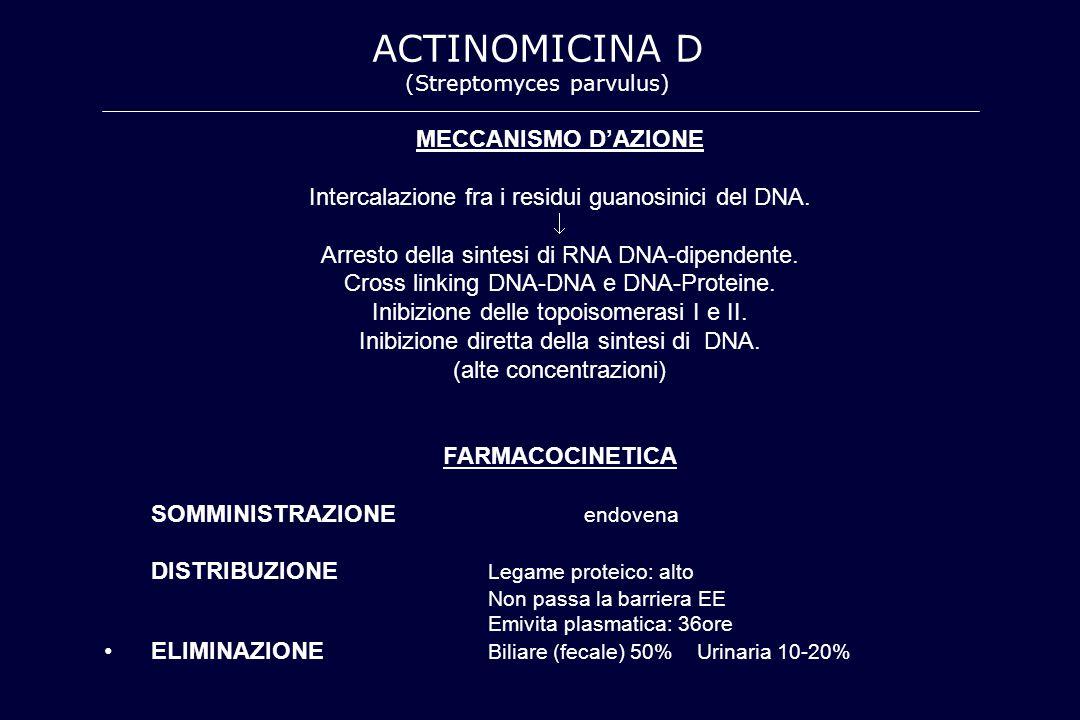 MECCANISMO D'AZIONE Intercalazione fra i residui guanosinici del DNA.  Arresto della sintesi di RNA DNA-dipendente. Cross linking DNA-DNA e DNA-Prote
