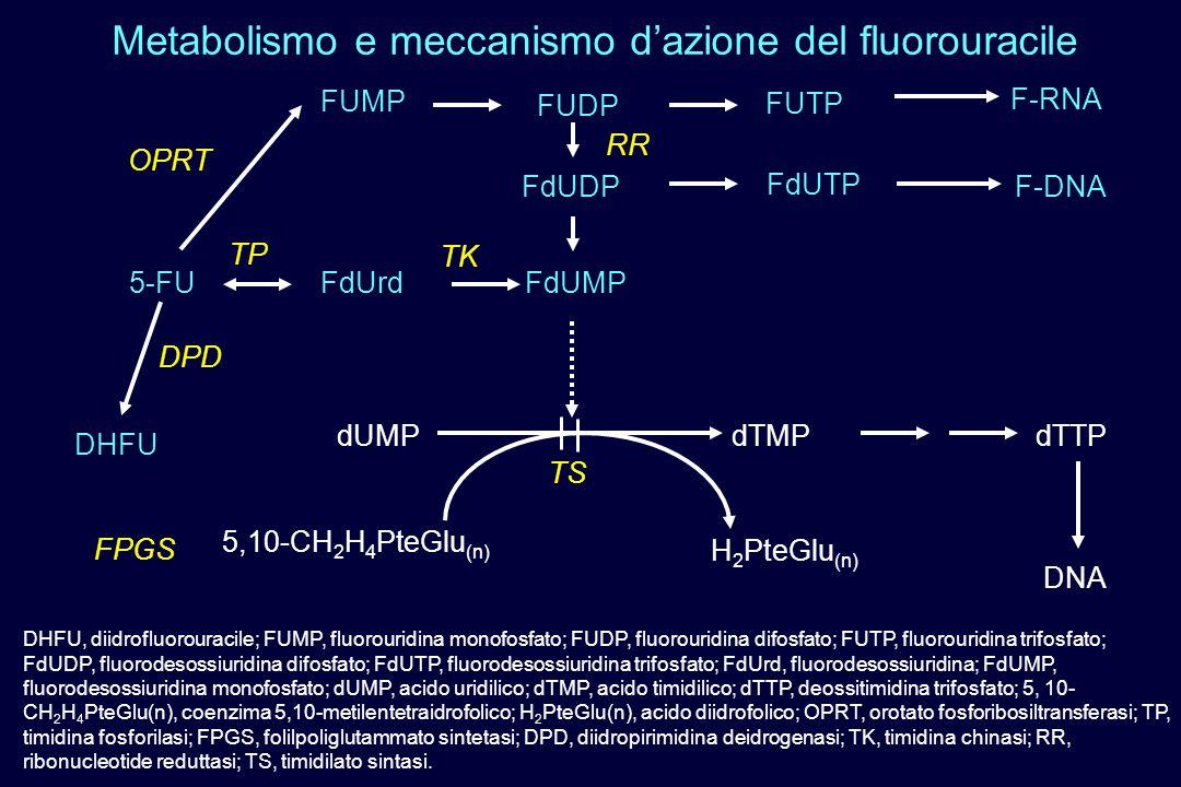 DHFU, diidrofluorouracile; FUMP, fluorouridina monofosfato; FUDP, fluorouridina difosfato; FUTP, fluorouridina trifosfato; FdUDP, fluorodesossiuridina