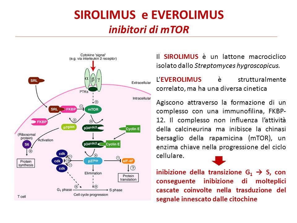 Il SIROLIMUS è un lattone macrociclico isolato dallo Streptomyces hygroscopicus.
