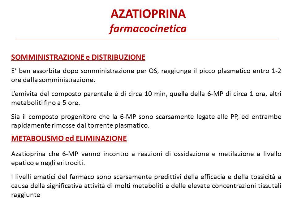 AZATIOPRINA farmacocinetica E' ben assorbita dopo somministrazione per OS, raggiunge il picco plasmatico entro 1-2 ore dalla somministrazione.