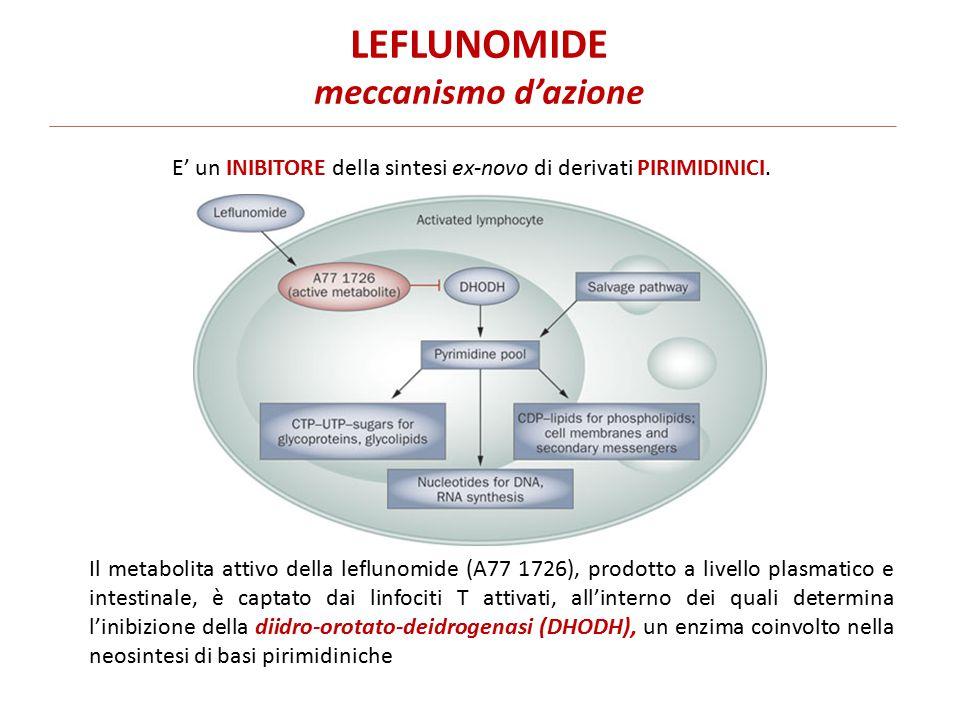 LEFLUNOMIDE meccanismo d'azione Il metabolita attivo della leflunomide (A77 1726), prodotto a livello plasmatico e intestinale, è captato dai linfociti T attivati, all'interno dei quali determina l'inibizione della diidro-orotato-deidrogenasi (DHODH), un enzima coinvolto nella neosintesi di basi pirimidiniche E' un INIBITORE della sintesi ex-novo di derivati PIRIMIDINICI.