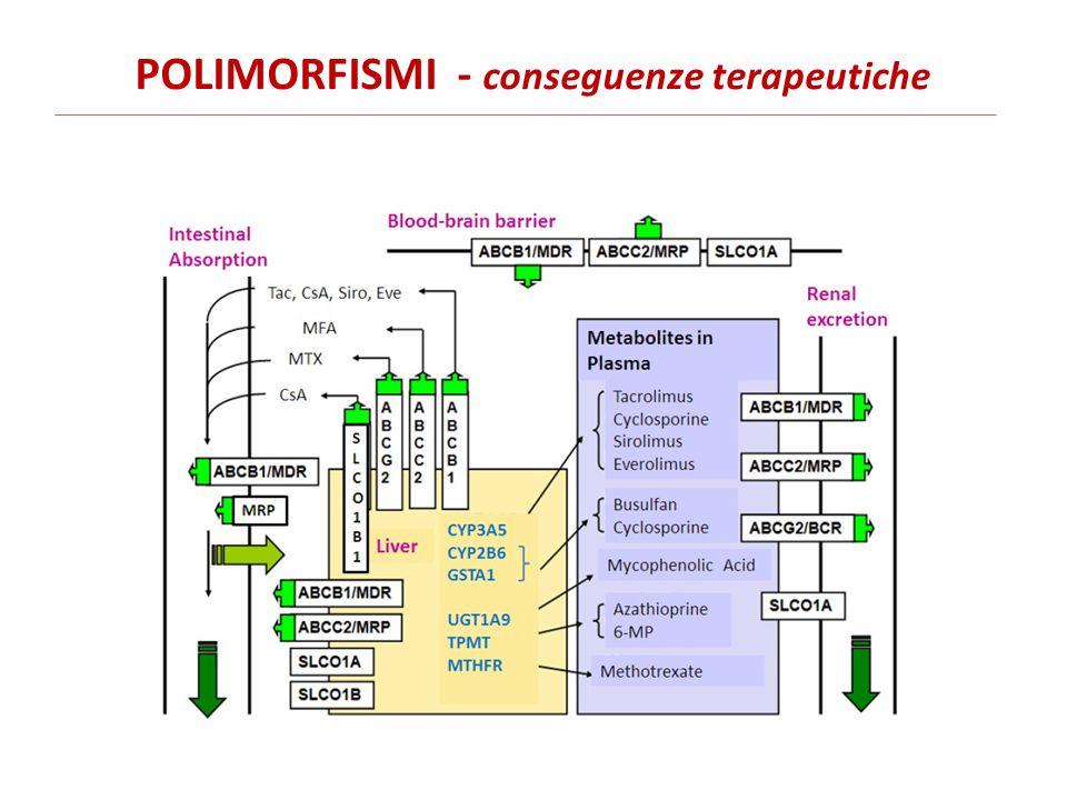 POLIMORFISMI - conseguenze terapeutiche