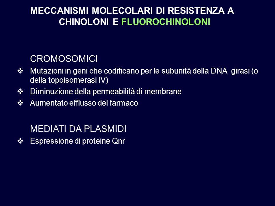 CROMOSOMICI  Mutazioni in geni che codificano per le subunità della DNA girasi (o della topoisomerasi IV)  Diminuzione della permeabilità di membran