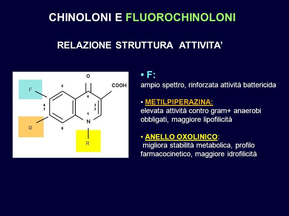 F: ampio spettro, rinforzata attività battericida METILPIPERAZINA: elevata attività contro gram+ anaerobi obbligati, maggiore lipofilicità ANELLO OXOL