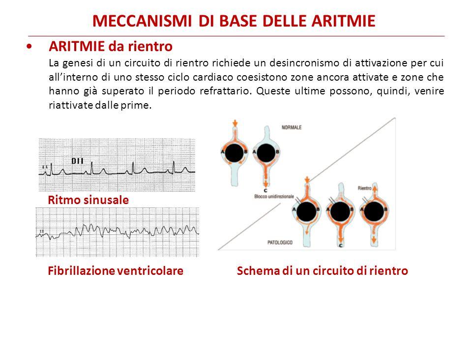 ARITMIE da rientro La genesi di un circuito di rientro richiede un desincronismo di attivazione per cui all'interno di uno stesso ciclo cardiaco coesi