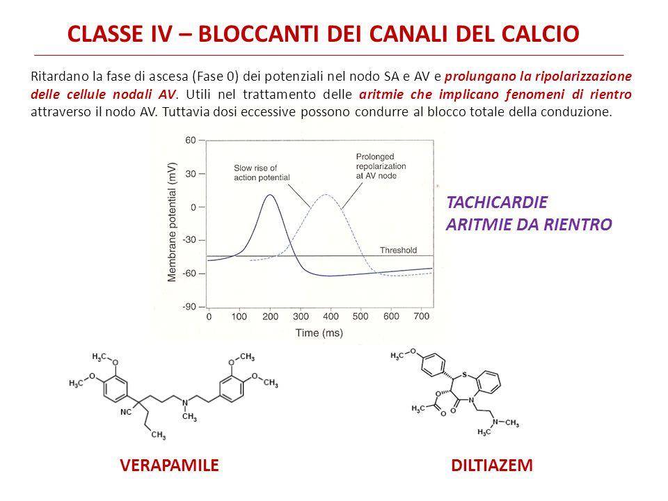 Ritardano la fase di ascesa (Fase 0) dei potenziali nel nodo SA e AV e prolungano la ripolarizzazione delle cellule nodali AV. Utili nel trattamento d