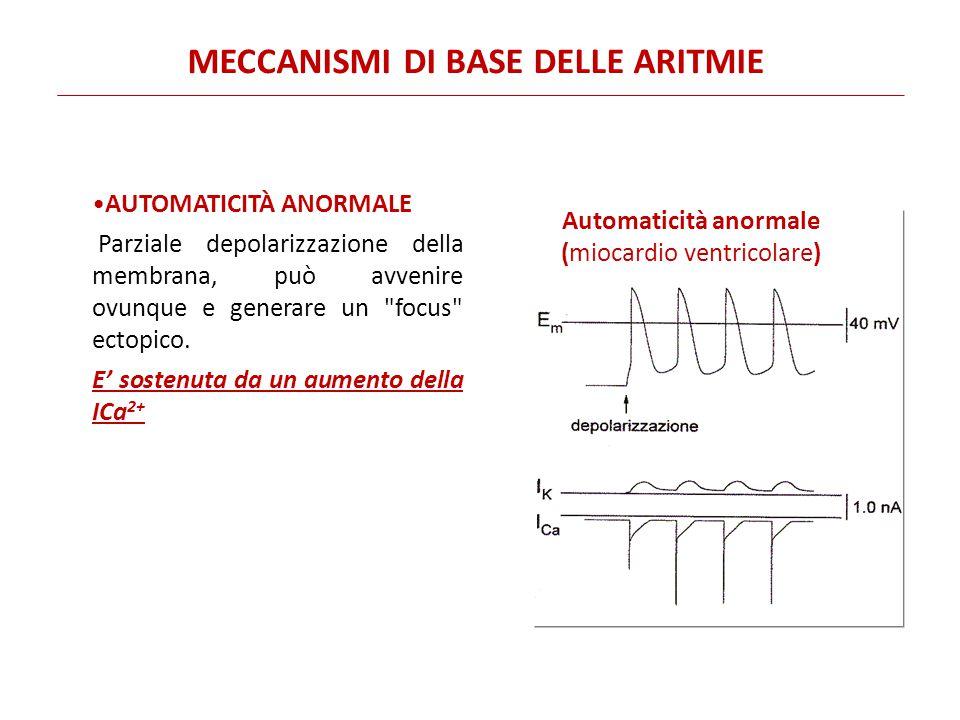 AUTOMATICITÀ ANORMALE Parziale depolarizzazione della membrana, può avvenire ovunque e generare un