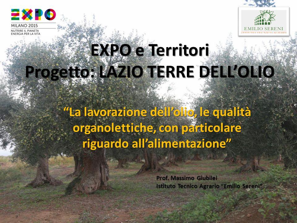 """EXPO e Territori Progetto: LAZIO TERRE DELL'OLIO """"La lavorazione dell'olio, le qualità organolettiche, con particolare riguardo all'alimentazione"""" Pro"""