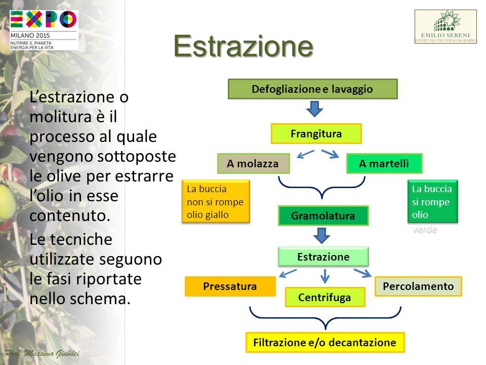 Estrazione L'estrazione o molitura è il processo al quale vengono sottoposte le olive per estrarre l'olio in esse contenuto. Le tecniche utilizzate se