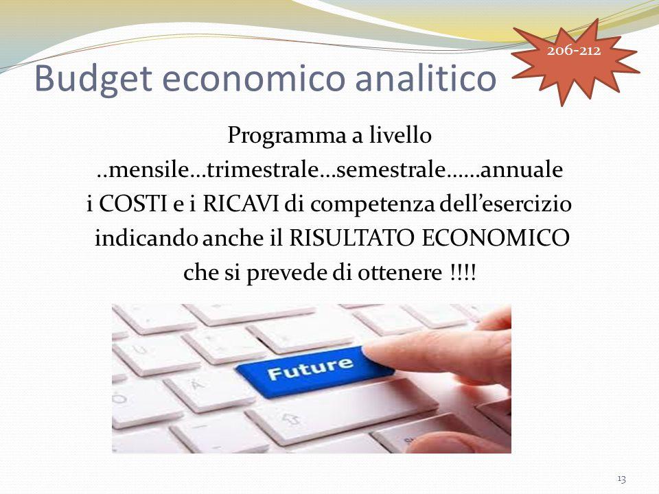 Budget economico analitico Programma a livello..mensile…trimestrale…semestrale……annuale i COSTI e i RICAVI di competenza dell'esercizio indicando anch