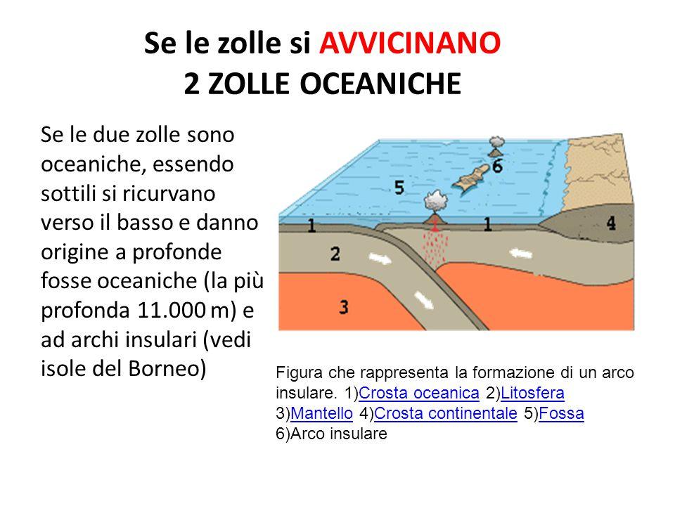 Se le zolle si AVVICINANO 2 ZOLLE OCEANICHE Se le due zolle sono oceaniche, essendo sottili si ricurvano verso il basso e danno origine a profonde fosse oceaniche (la più profonda 11.000 m) e ad archi insulari (vedi isole del Borneo) Figura che rappresenta la formazione di un arco insulare.