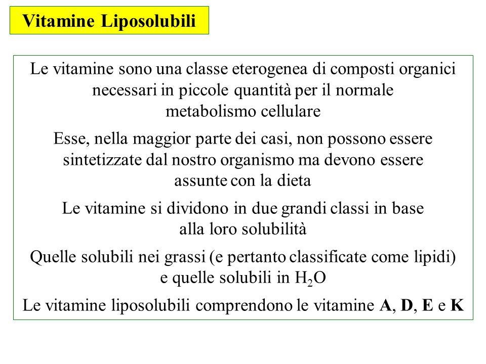 Vitamine Liposolubili Le vitamine sono una classe eterogenea di composti organici necessari in piccole quantità per il normale metabolismo cellulare E