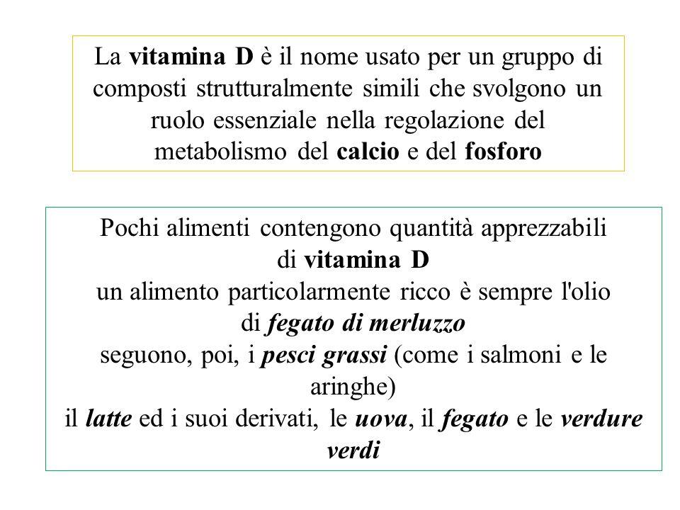 La vitamina D è il nome usato per un gruppo di composti strutturalmente simili che svolgono un ruolo essenziale nella regolazione del metabolismo del
