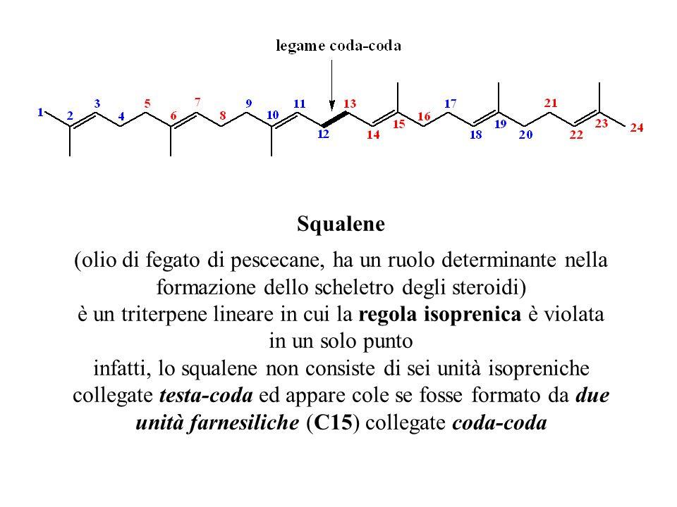 Squalene (olio di fegato di pescecane, ha un ruolo determinante nella formazione dello scheletro degli steroidi) è un triterpene lineare in cui la reg