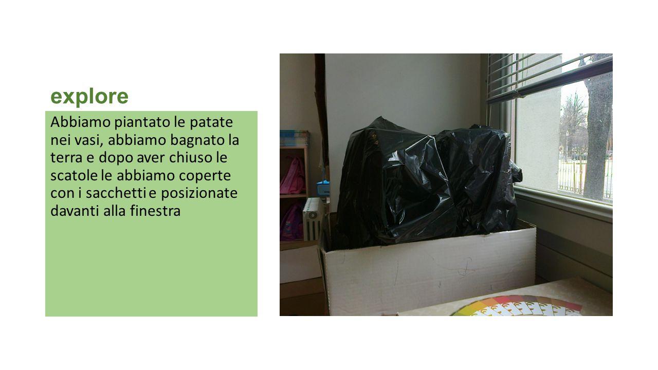 explore Abbiamo piantato le patate nei vasi, abbiamo bagnato la terra e dopo aver chiuso le scatole le abbiamo coperte con i sacchetti e posizionate d