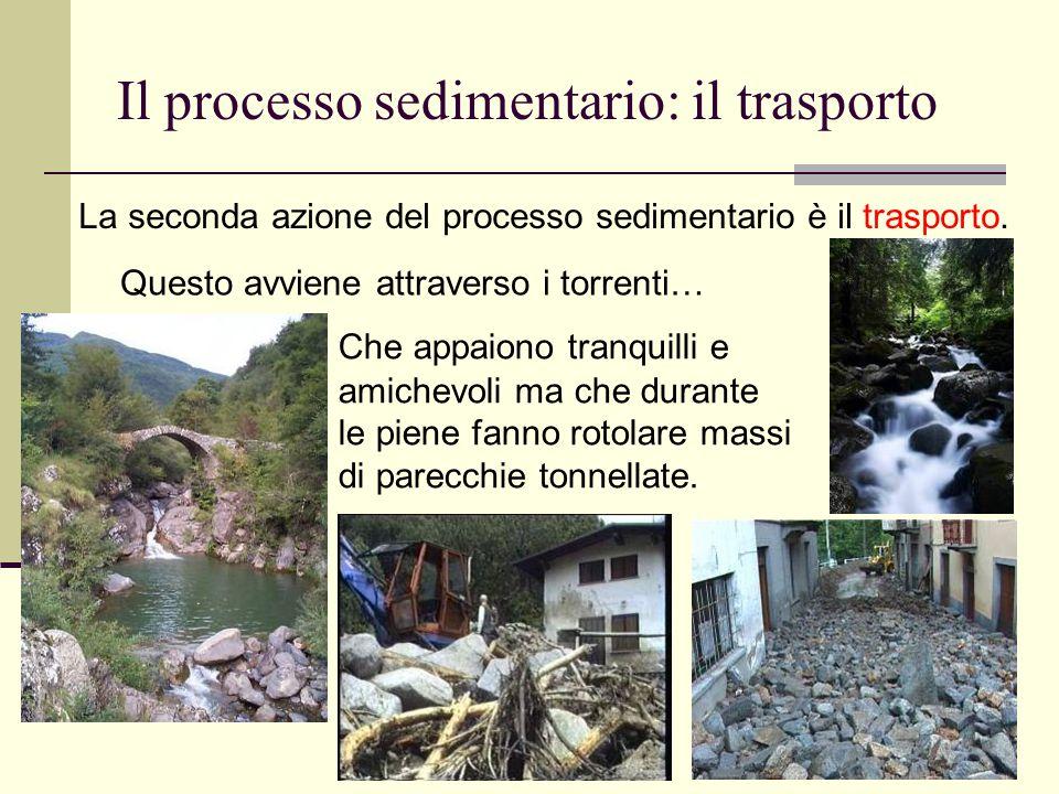 12 Il processo sedimentario: il trasporto Che appaiono tranquilli e amichevoli ma che durante le piene fanno rotolare massi di parecchie tonnellate. L