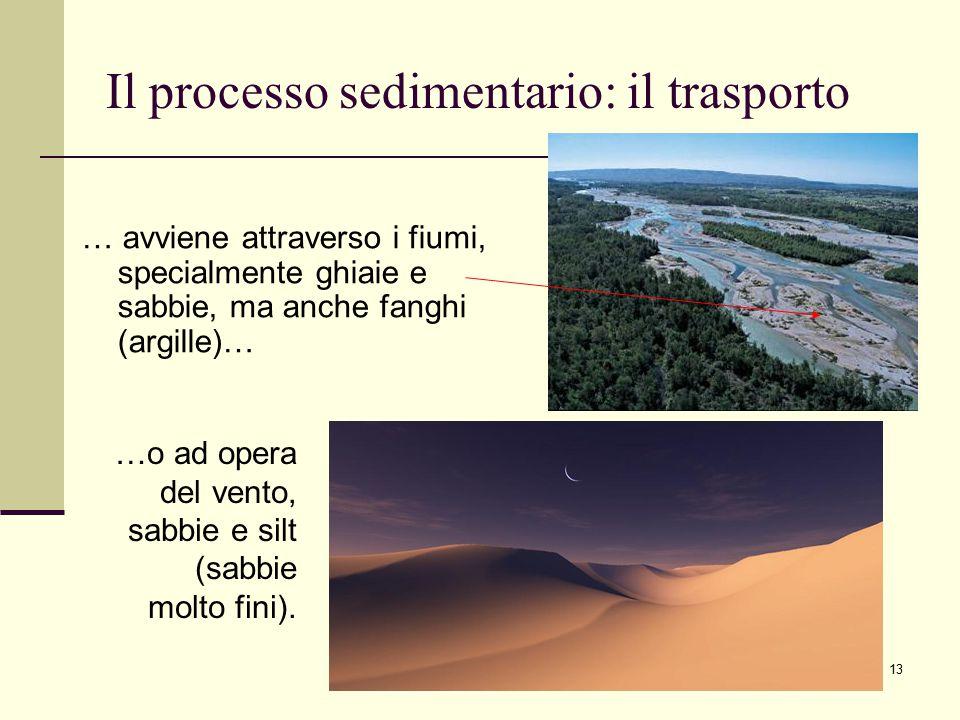 13 Il processo sedimentario: il trasporto …o ad opera del vento, sabbie e silt (sabbie molto fini). … avviene attraverso i fiumi, specialmente ghiaie