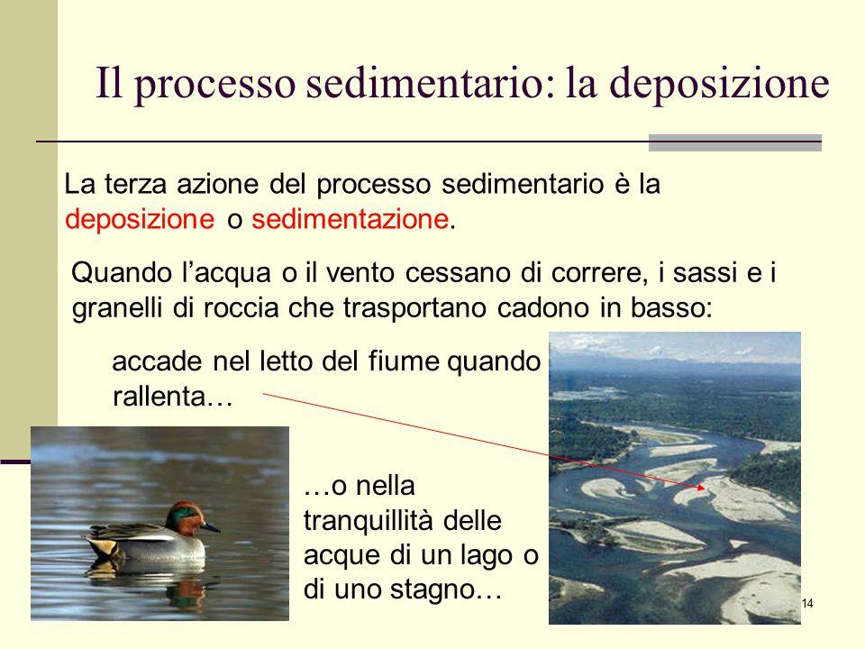 14 Il processo sedimentario: la deposizione La terza azione del processo sedimentario è la deposizione o sedimentazione. …o nella tranquillità delle a