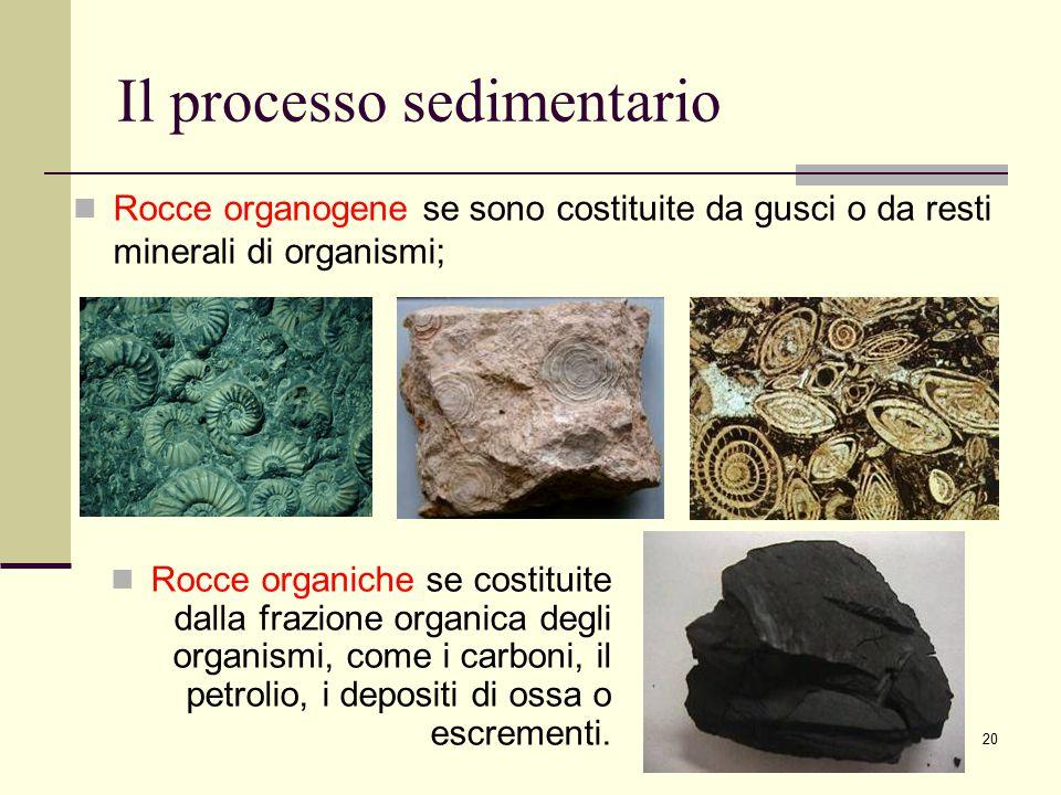 20 Il processo sedimentario Rocce organiche se costituite dalla frazione organica degli organismi, come i carboni, il petrolio, i depositi di ossa o e