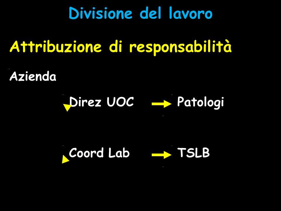 Divisione del lavoro Attribuzione di responsabilità Direz UOC Coord Lab PatologiTSLB Case manager Process manager Azienda