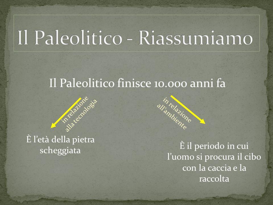 Il Paleolitico finisce 10.000 anni fa È l'età della pietra scheggiata in relazione alla tecnologia in relazione all'ambiente È il periodo in cui l'uom