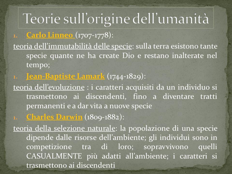 1. Carlo Linneo (1707-1778): teoria dell'immutabilità delle specie: sulla terra esistono tante specie quante ne ha create Dio e restano inalterate nel