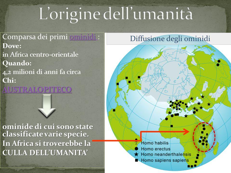 ominidi ominidi Comparsa dei primi ominidi :ominidi Dove: in Africa centro-orientale Quando: 4,2 milioni di anni fa circa Chi: AUSTRALOPITECO ominide